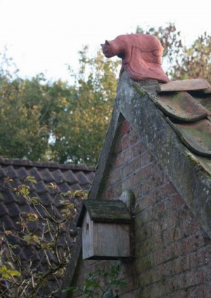 The Cat Ridgetile in Friesland