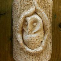 Tree Owl