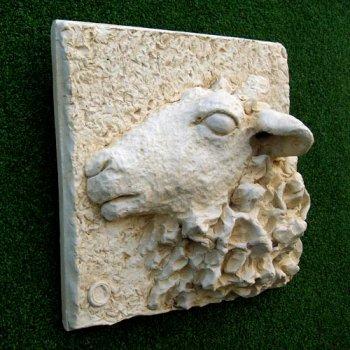 Mountain Ewe (2)