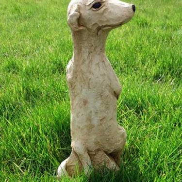 Meerkat (large)