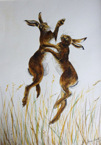 Irene Hart Boxing Hares